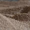 Proyecto de biomasa