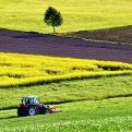 Valoración agraria