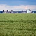 Proyecto agrícola