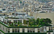 Cubiertas vegetales y eficiencia energética