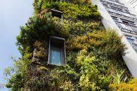 ¿Qué son los hoteles sostenibles?