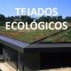 ¿Qué son los tejados ecológicos?