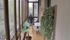 Eficiencia energética en arquitectura: la aportación de los espacios intermedios