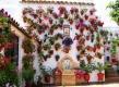Recuperando la ecoeficiencia de los patios mediterráneos