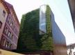 Fachadas vivas para mejorar la Eficiencia Energética de los edificios