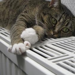 ¿Son obligatorios los repartidores de costes de calefacción?