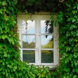 Calidad de las ventanas de en las CCAA españolas