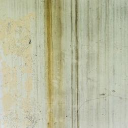 ¿Qué hago con un problema de humedades en paredes?
