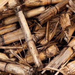 Cómo funciona la biomasa