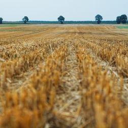 ¿Se puede comprar un terreno sin escritura?
