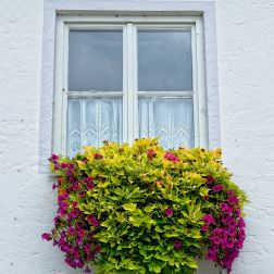 Cómo elegir una carpintería exterior para una vivienda