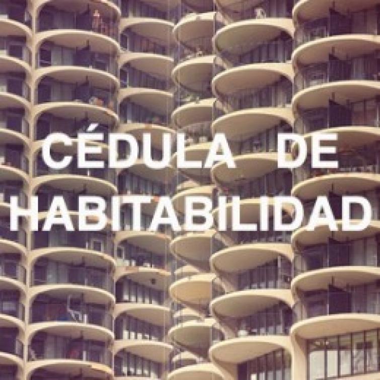 Cédula de habitabilidad: Claves