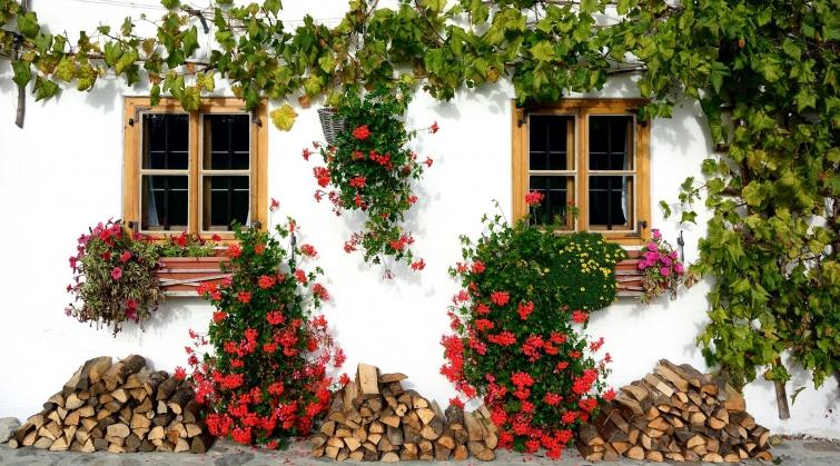 fachadas vegetales españa