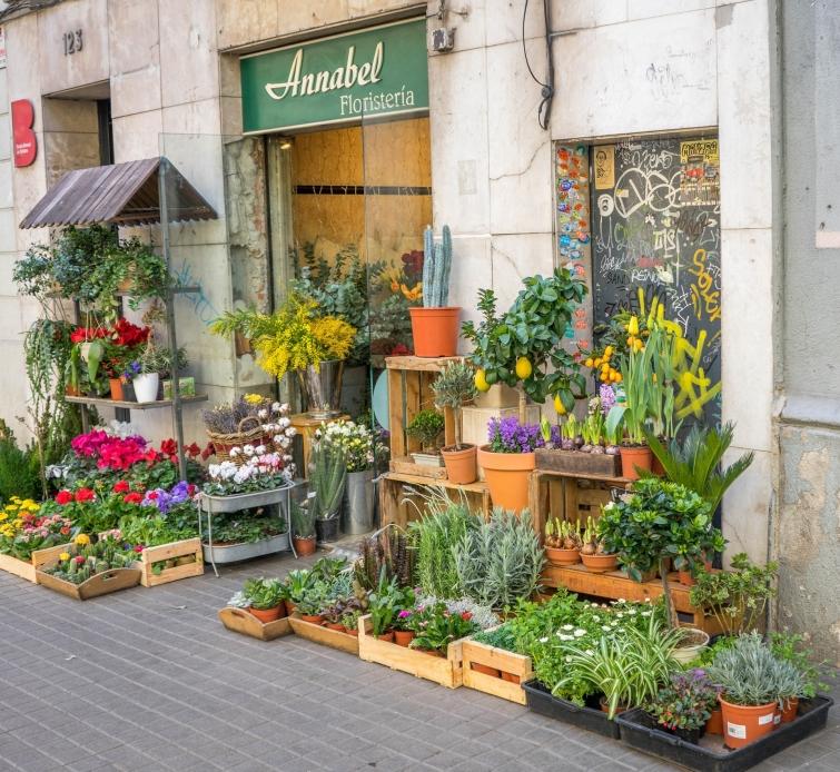 floristeria licencia apertura